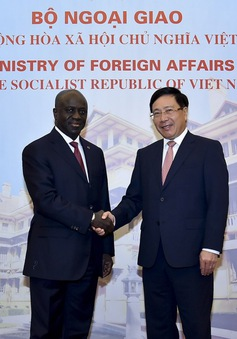 Phó Thủ tướng Phạm Bình Minh hội đàm với Bộ trưởng Ngoại giao Bờ Biển Ngà
