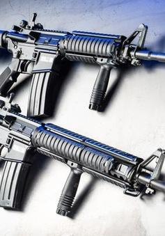 Argentina triệt phá đường dây buôn lậu vũ khí xuyên quốc gia