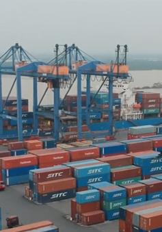 Chính thức có biểu thuế xuất nhập khẩu ưu đãi của CPTPP