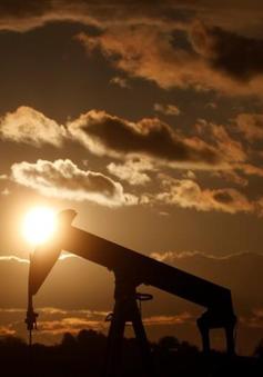 Giá dầu biến động nhẹ trước thềm G20