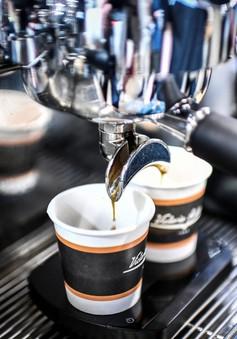 Cafe có thể sẽ là giải pháp cho bệnh tiểu đường và béo phì