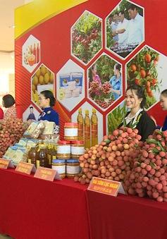 Sắp diễn ra tuần lễ vải thiều Lục Ngạn tại Thủ đô Hà Nội