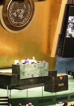 Việt Nam tin tưởng đảm nhận tốt vai trò tại Hội đồng Bảo an