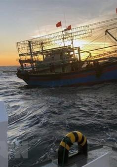 Vớt được thi thể 2 ngư dân tàu cá bị chìm ở Hải Phòng