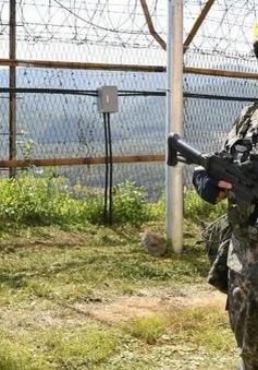 Phát hiện vật thể bay lạ ở khu phi quân sự liên Triều