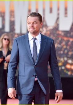 """Leonardo DiCaprio: """"Tôi cảm thấy mình may mắn"""""""