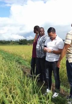 Doanh nghiệp Việt tìm kiếm cơ hội đầu tư ra nước ngoài