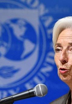 Giám đốc IMF có thể giữ chức Chủ tịch ECB