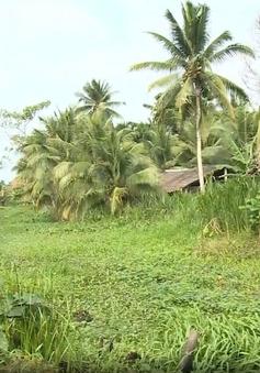 Kênh thủy lợi ở Trà Vinh tắc nghẽn vì 2 hộ dân lấn chiếm