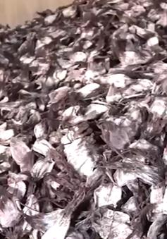 Quảng ngãi: Ngư dân lao đao vì tồn đọng trên 3 ngàn tấn mực khô