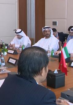 Đẩy mạnh khai thác tiềm năng hợp tác Việt Nam - UAE