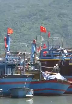Ngư dân gặp khó khăn vì phải thay đổi ngư trường đánh bắt