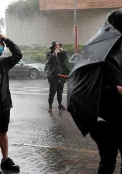 Hong Kong (Trung Quốc) ban bố cảnh báo bão số 3