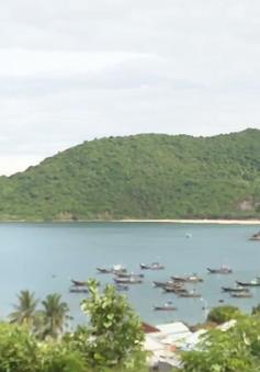Người dân Cù Lao Chàm tự bảo vệ rừng