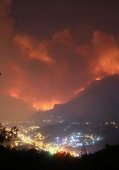 Cháy rừng ở Thổ Nhĩ Kỳ gây nhiều thiệt hại
