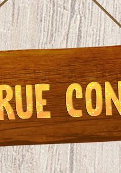 VTV True Concert -  bản hòa thanh của những thanh âm đến từ thiên nhiên