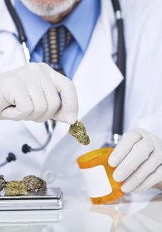 Tòa án Mexico yêu cầu quy định rõ ràng về sử dụng cần sa chữa bệnh