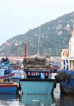 Nhiều tỉnh xin giãn nợ cho chủ tàu vỏ thép
