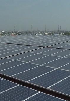 TP.HCM nhiều giải pháp phát triển điện mặt trời áp mái
