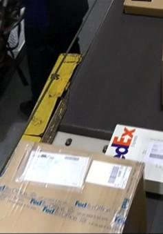 Trung Quốc phát hiện một gói bưu kiện của FedEx chứa súng ngắn