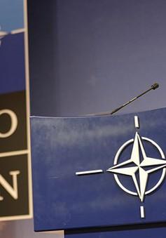 NATO cam kết phản ứng thận trọng thời kỳ hậu INF