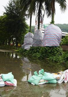 Cập nhật 17h 2/8: Quảng Ninh, Hải Phòng, Thái Bình, Nam Định, Hà Nội ứng phó bão số 3