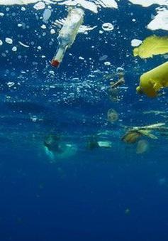 """Phát hiện """"ổ"""" hạt vi nhựa ở Bắc Đại Tây Dương"""