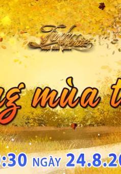 Tình khúc vượt thời gian tháng 8: Những tình khúc bất hủ về mùa thu