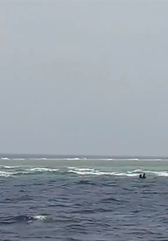 Cứu tàu cá bị nạn về đảo Sơn Ca an toàn