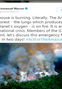 """Cháy rừng Amazon: Người nổi tiếng """"share"""" nhầm ảnh"""