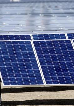 Lượng rác thải khổng lồ từ pin mặt trời