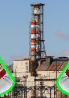"""Sản xuất """"rượu phóng xạ"""" từ lúa mạch tại Chernobyl"""