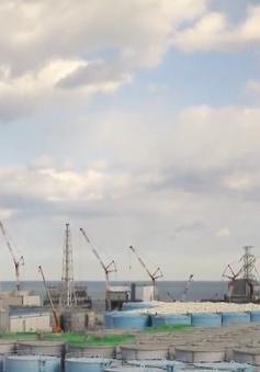 Nhật Bản chưa quyết định cụ thể về xử lý nước nhiễm xạ