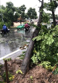 Cập nhật thiệt hại bão số 3: 8 người thiệt mạng, 11 người vẫn mất tích