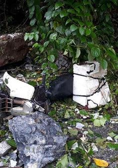 Bắc Kạn: Sạt lở đá khiến 2 người thương vong
