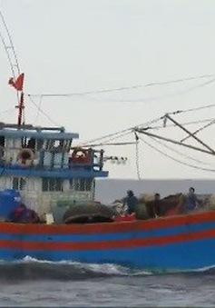 Lai dắt tàu cá  Quảng Bình gặp nạn vào bờ