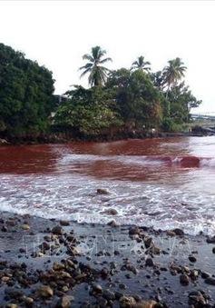 Tràn 200.000 lít bùn độc hại ra biển ở Papua New Guinea