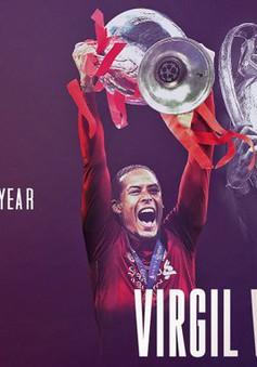 Đánh bại Ronaldo và Messi, Van Dijk giành giải Cầu thủ xuất sắc nhất của UEFA