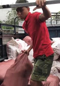 Bình Dương: Phát hiện 20 tấn thịt lợn bẩn giấu trong container