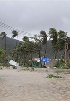 Gần 300.000 khách hàng bị cắt điện do ảnh hưởng bão số 3