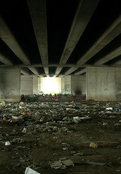 Gầm cầu biến thành bãi rác gần 10 năm