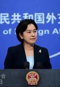 Trung Quốc, Nhật Bản tái khởi động đối thoại chiến lược