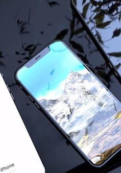 iPhone 11 sẽ sớm về Việt Nam