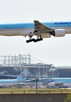 Vé máy bay giữa Nhật Bản và Hàn Quốc rớt xuống dưới 10 USD