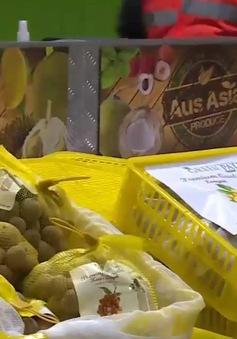 Nhãn tươi Việt Nam được thị trường Australia đón nhận