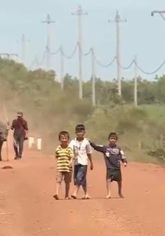 Đắk Lắk: Thiên tai, dịch bệnh ảnh hưởng đến đời sống người dân