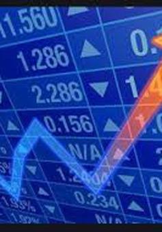 Marketwatch: Làn sóng quỹ thị trường mới nổi đổ vào chứng khoán Việt Nam