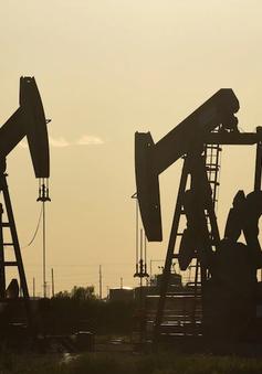 Giá dầu giảm sau khi Tổng thống Mỹ cách chức cố vấn an ninh