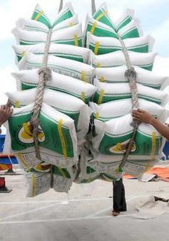Giá gạo Việt Nam xuống mức thấp của 12 năm