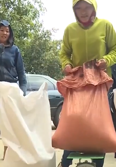 Quảng Bình: xuất cấp 1000 tấn gạo hỗ trợ người dân vùng lũ